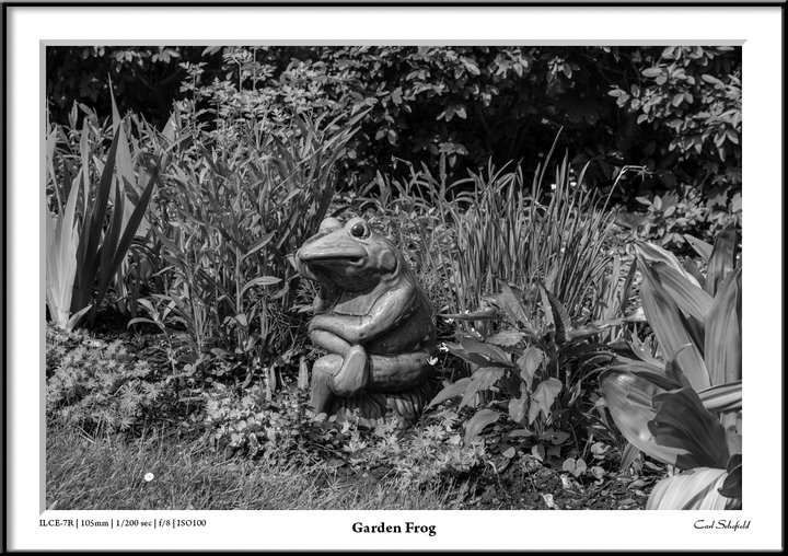 photographer Carl Schofield.