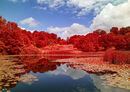 Houston Pond