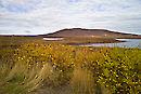 Chapman Lake