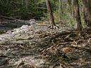 Sixmile Creek I