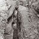 Upper Treman Gorge